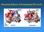structural basis of functional diversity