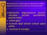 manifestazioni morfologiche espressione della degenerazione neuronale ed extraneuronale