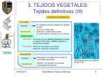 3 tejidos vegetales tejidos definitivos iii