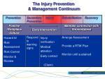 the injury prevention management continuum