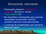 serotonerjik n ronlarda