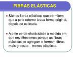 fibras el sticas1