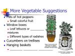 more vegetable suggestions