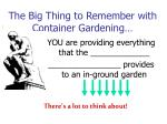 the big thing to remember with container gardening