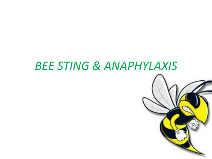 bee sting anaphylaxis n.