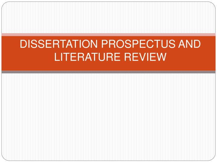 Dissertation literature review
