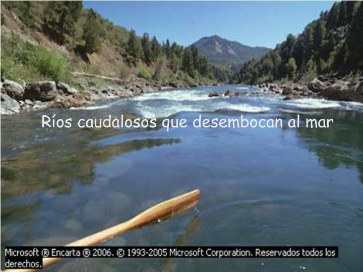 Ríos caudalosos que desembocan al mar