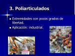 3 poliarticulados