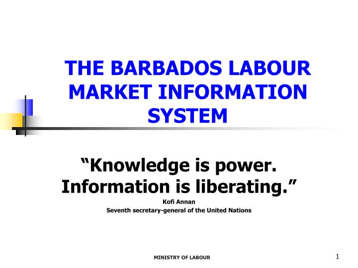 the barbados labour market information system n.