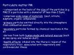 particulate matter pm