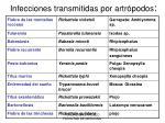 infecciones transmitidas por artr podos
