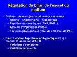 r gulation du bilan de l eau et du sodium