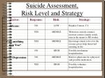 suicide assessment risk level and strategy1