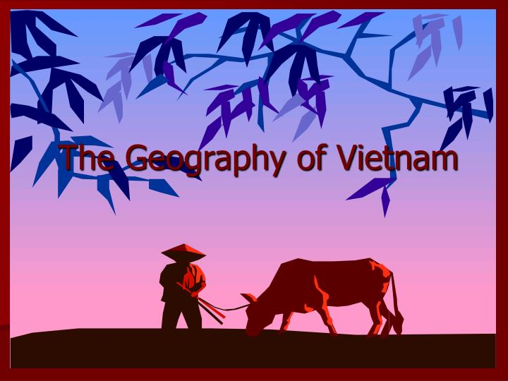 the geography of vietnam n.