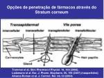 op es de penetra o de f rmacos atrav s do stratum corneum