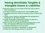valuing identifiable tangible intangible assets liabilities