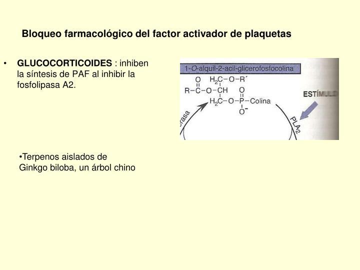 Bloqueo farmacológico del factor activador de plaquetas