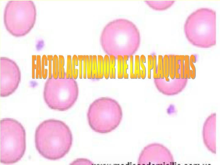FACTOR ACTIVADOR DE LAS PLAQUETAS