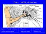 outer middle inner ear1