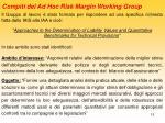 compiti del ad hoc risk margin working group