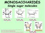 monosaccharides single sugar molecules