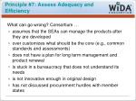 principle 7 assess adequacy and efficiency