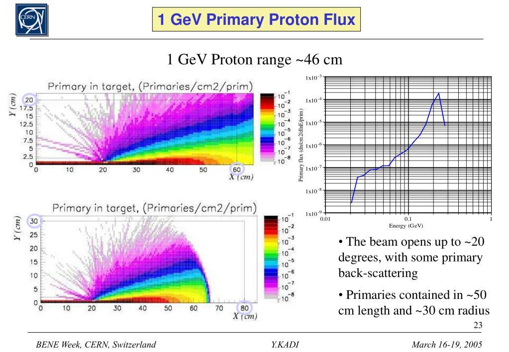 1 GeV Primary Proton Flux