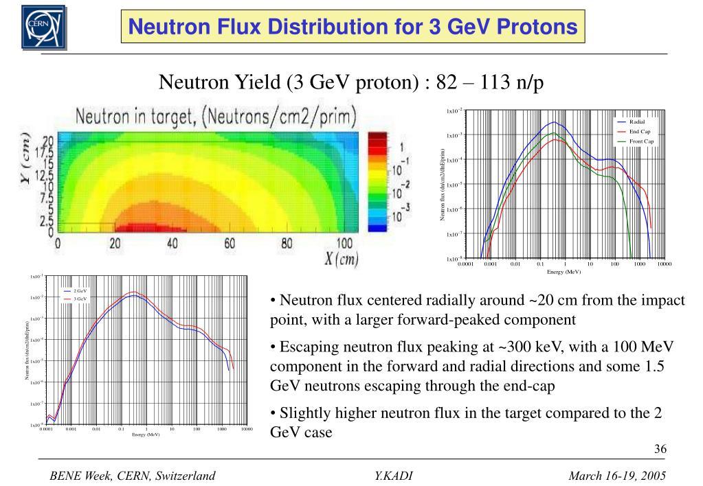 Neutron Flux Distribution for 3 GeV Protons
