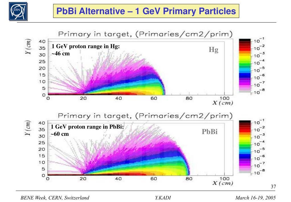 PbBi Alternative – 1 GeV Primary Particles