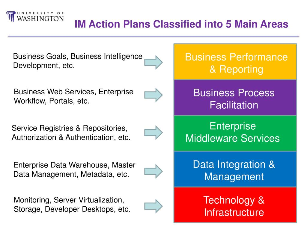IM Action Plans Classified into 5 Main Areas