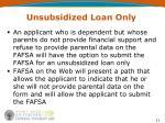 unsubsidized loan only