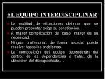 el equipo interdisciplinar