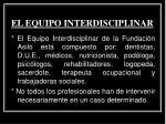 el equipo interdisciplinar1