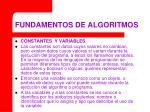 fundamentos de algoritmos15