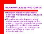 programacion estructurada12