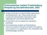 visionsseminar mellem frederiksberg hospital og socialdirektoratet 2003