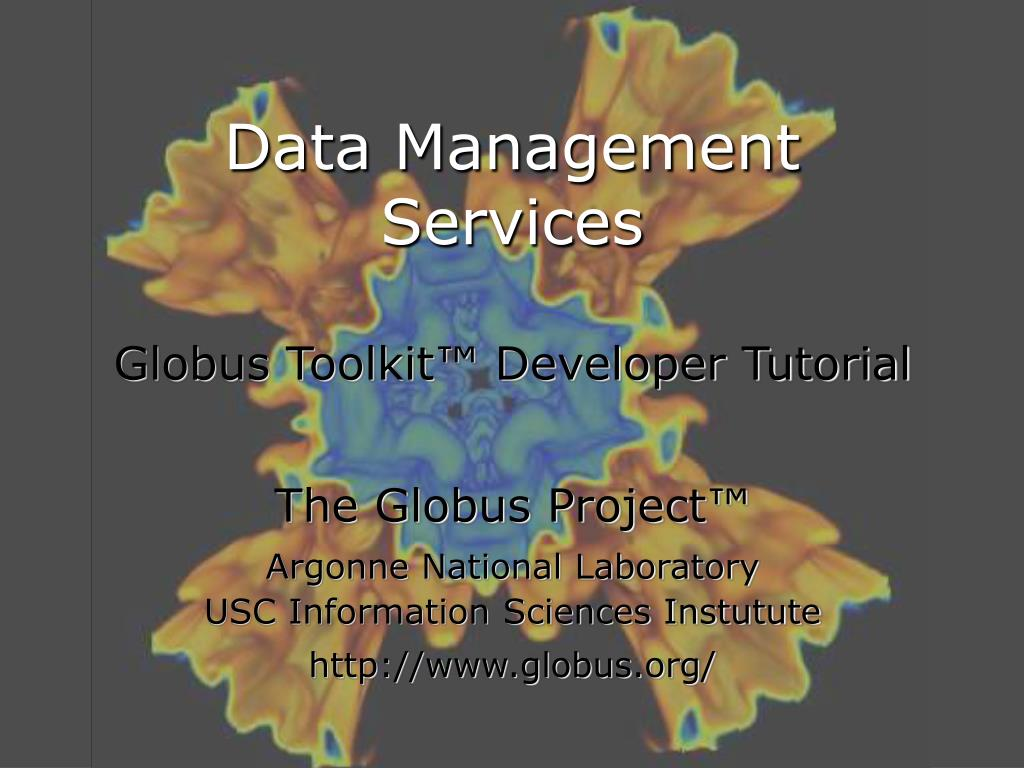 data management services l.