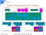 globus components in action