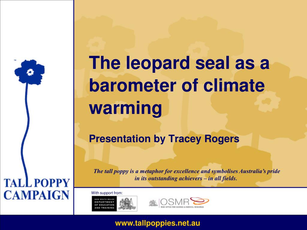 the leopard seal as a barometer of climate warming presentation by tracey rogers