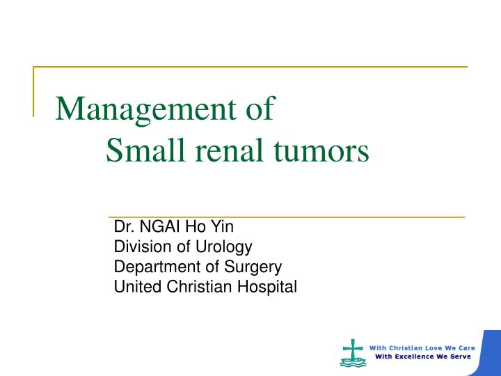 management of small renal tumors n.