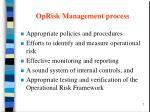 oprisk management process