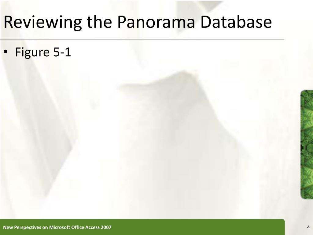 Reviewing the Panorama Database