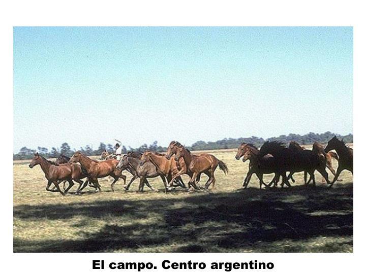 El campo. Centro argentino