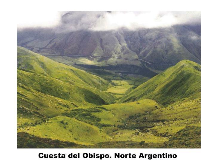 Cuesta del Obispo. Norte Argentino