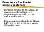 estructura y funci n del genoma bacteriano