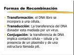 formas de recombinaci n
