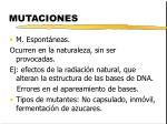 mutaciones1