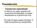 transducci n2