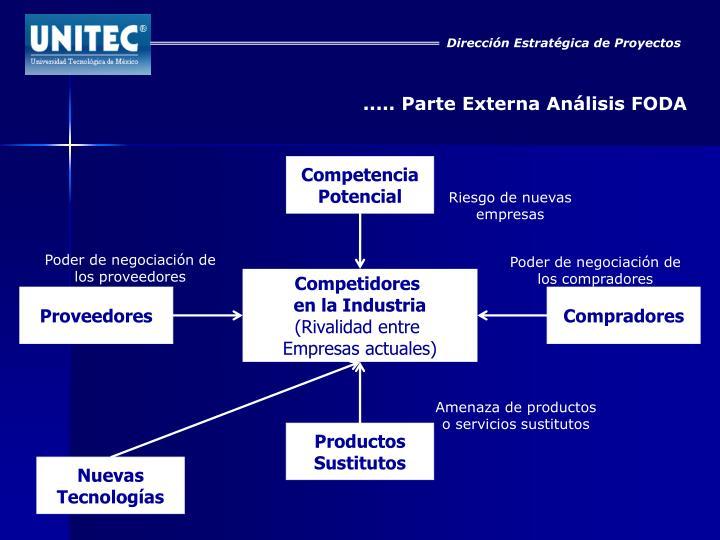 Dirección Estratégica de Proyectos