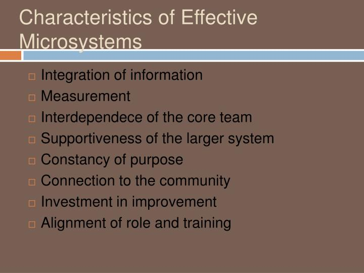 Characteristics of Effective Microsystems